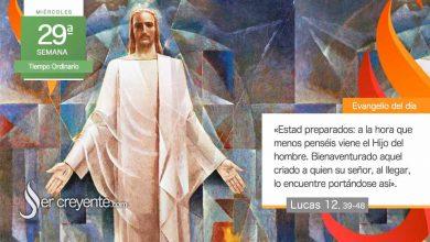 """Photo of Evangelio del día 21 octubre 2020 (""""A la hora que menos penséis viene el Hijo del hombre"""")"""