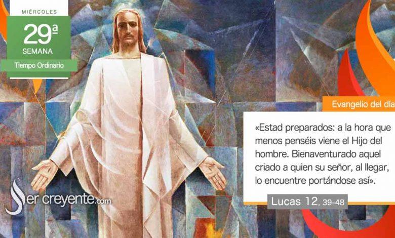 """Photo of Evangelio del día 20 octubre 2020 (""""A la hora que menos penséis viene el Hijo del hombre"""")"""