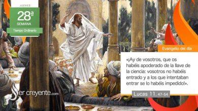 """Photo of Evangelio del día 14 octubre 2021 (""""Os habéis apoderado de la llave de la ciencia"""")"""