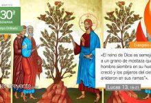 """Photo of Evangelio del día 27 octubre 2020 (""""El reino es semejante a un grano de mostaza"""")"""