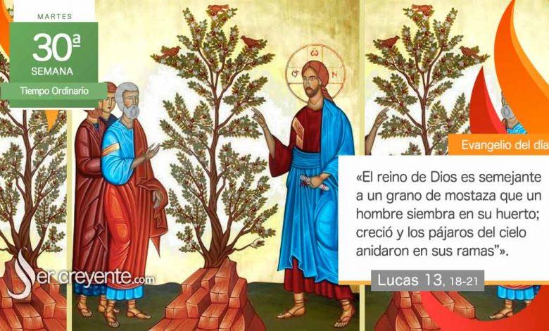 """Photo of Evangelio del día 26 octubre 2021 (""""El reino es semejante a un grano de mostaza"""")"""