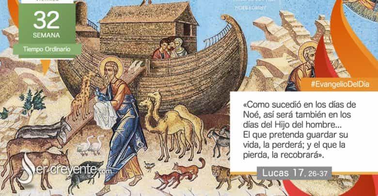 """Photo of Evangelio del día 13 noviembre 2020 (""""El que pretenda guardar su vida, la perderá"""")"""