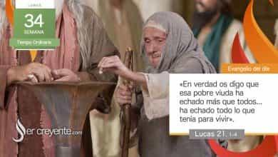 """Photo of Evangelio del día 23 noviembre 2020 (""""Esa viuda ha echado todo lo que tenía para vivir"""")"""