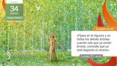 """Photo of Evangelio del día 27 noviembre 2020 (""""Cielo y tierra pasarán, mis palabras no pasarán"""")"""