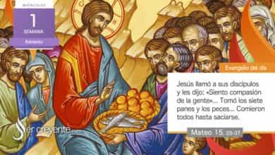 """Photo of Evangelio del día 2 diciembre 2020 (""""Siento compasión de la gente"""")"""