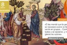 """Photo of Evangelio del día 8 enero 2021 (""""Partió los panes y se los iba dando"""")"""