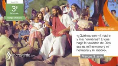 """Photo of Evangelio del día 26 enero 2021 (""""¿Quiénes son mi madre y mis hermanos?"""")"""