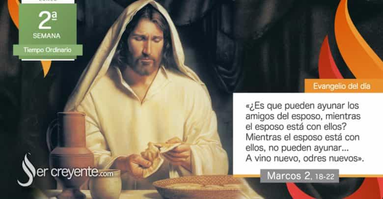 """Photo of Evangelio del día 18 enero 2021 (""""A vino nuevo, odres nuevos"""")"""