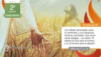 """Photo of Evangelio del día 19 enero 2021 (""""El sábado se hizo para el hombre"""")"""
