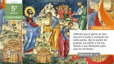 """Photo of Evangelio del día 13 febrero 2021 (""""Siento compasión de la gente"""")"""