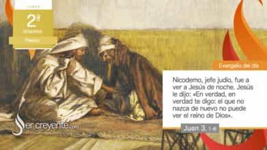"""Photo of Evangelio del día 12 abril 2021 (""""Tenéis que nacer de nuevo"""")"""