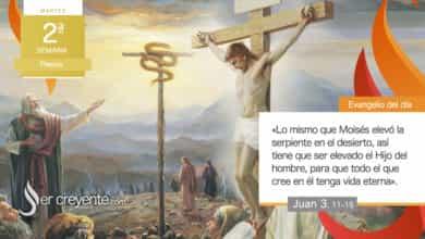 """Photo of Evangelio del día 13 abril 2021 (""""Nadie ha subido al cielo sino el que bajó del cielo"""")"""
