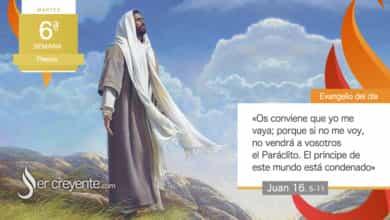 """Photo of Evangelio del día 11 mayo 2021 (""""El príncipe de este mundo está condenado"""")"""