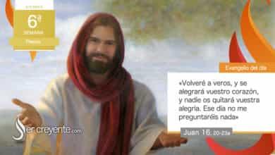 """Photo of Evangelio del día 14 mayo 2021 (""""Nadie os quitará vuestra alegría"""")"""