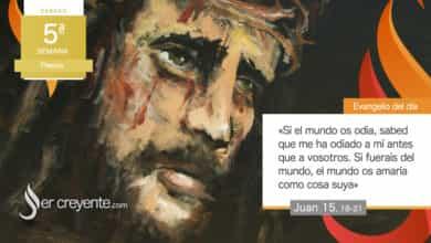 """Photo of Evangelio del día 8 mayo 2021 (""""También a vosotros os perseguirán"""")"""