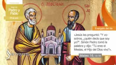 Photo of Evangelio del día 29 junio 2021 (Santos Pedro y Pablo)