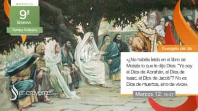 """Photo of Evangelio del día 2 junio 2021 (""""No es Dios de muertos, sino de vivos"""")"""