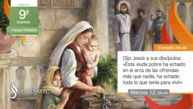 """Photo of Evangelio del día 5 junio 2021 (""""Esta viuda pobre ha echado todo lo que tenía para vivir"""")"""