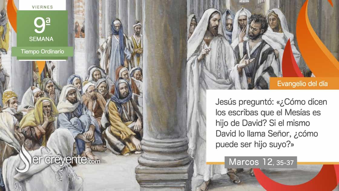 viernes 9 tiempo ordinario hijo de david mesias