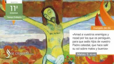 """Photo of Evangelio del día 15 junio 2021 (""""Amad a vuestros enemigos"""")"""