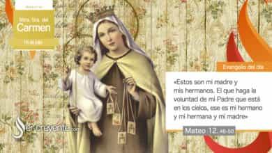 Photo of Evangelio del día 16 julio 2021 (Virgen del Carmen)