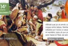 """Photo of Evangelio del día 9 julio 2021 (""""Os envío como ovejas entre lobos"""")"""