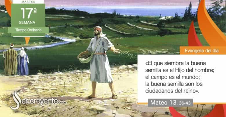 """Photo of Evangelio del día 27 julio 2021 (""""La buena semilla son los ciudadanos del reino"""")"""