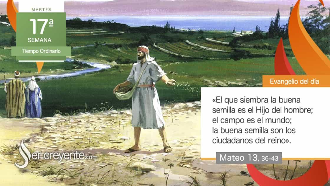 martes 17 xvii tiempo ordinario La buena semilla son los ciudadanos del reino