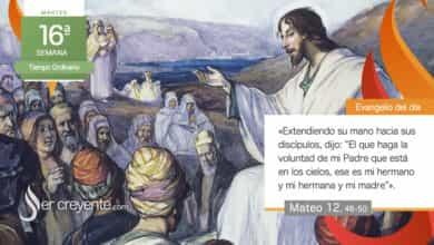 """Photo of Evangelio del día 20 julio 2021 (""""Mis hermanos son los que hacen la voluntad de mi Padre"""")"""