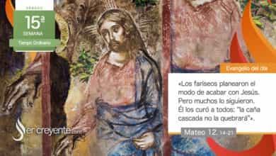 """Photo of Evangelio del día 17 julio 2021 (""""Jesús los curó a todos"""")"""