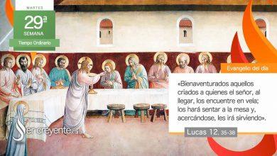 """Photo of Evangelio del día 20 octubre 2020 (""""Bienaventurados los criados en vela"""")"""