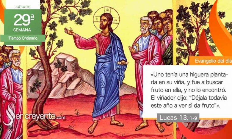 """Photo of Evangelio del día 23 octubre 2021 (""""Uno tenía una higuera plantada en su viña"""")"""