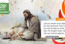 """Photo of Evangelio del día 16 octubre 2020 (""""No tengáis miedo: valéis más que muchos pájaros"""")"""