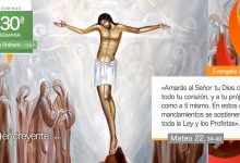 """Photo of Evangelio del día 25 octubre 2020 (""""¿Cuál es el mandamiento principal?"""")"""