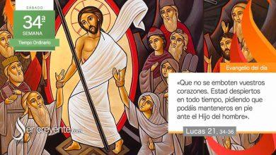 """Photo of Evangelio del día 28 noviembre 2020 (""""Estad despiertos en todo tiempo"""")"""