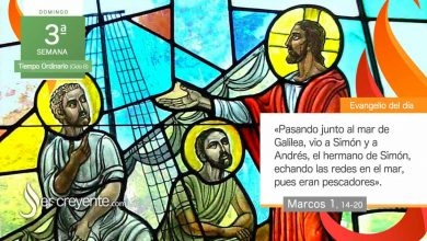 "Photo of Evangelio del día 24 enero 2021 (""Venid en pos de mí"")"
