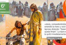"""Photo of Evangelio del día 14 febrero 2021 (""""Si quieres, puedes limpiarme"""")"""