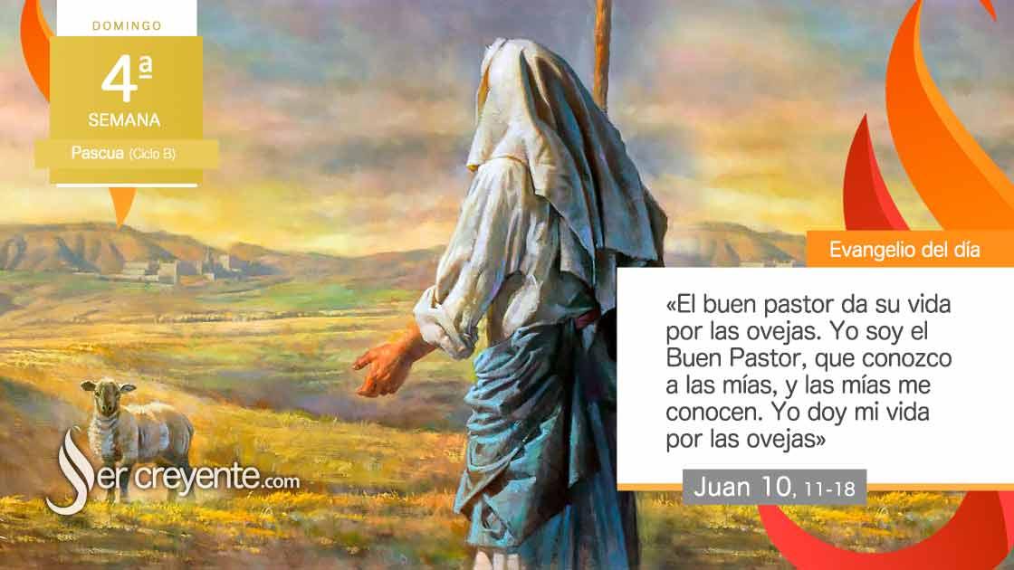 domingo 4 pascua ciclo b el buen pastor da su vida por las ovejas