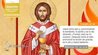 Photo of Evangelio del día 27 mayo 2021 (Jesucristo, Sumo y Eterno Sacerdote)