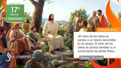 """Photo of Evangelio del día 28 julio 2021 (""""El reino se parece a un tesoro escondido"""")"""