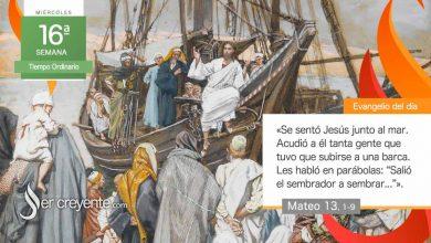 """Photo of Evangelio del día 21 julio 2021 (""""Salió el sembrador a sembrar"""")"""
