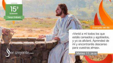 """Photo of Evangelio del día 15 julio 2021 (""""Venid a mí todos los cansados y agobiados"""")"""