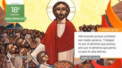 """Photo of Evangelio del día 1 agosto 2021 (""""Yo soy el pan de vida"""")"""
