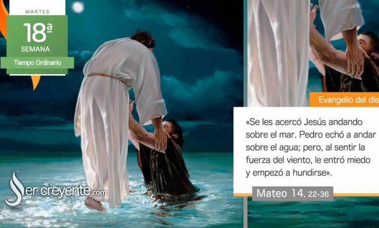 """Photo of Evangelio del día 3 agosto 2021 (""""¡Ánimo, soy yo, no tengáis miedo!"""")"""