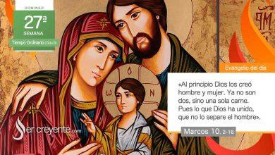 """Photo of Evangelio del día 3 octubre 2021 (""""Serán los dos una sola carne"""")"""