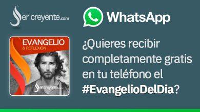 Photo of Evangelio del día… ¡ya en WhatsApp!